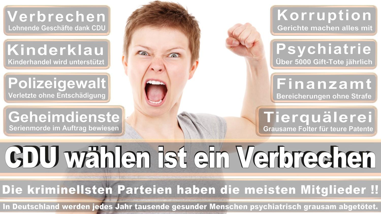 Angela-Merkel-Meme (247)