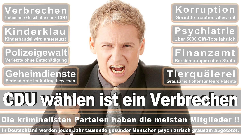 Angela-Merkel-Meme (250)