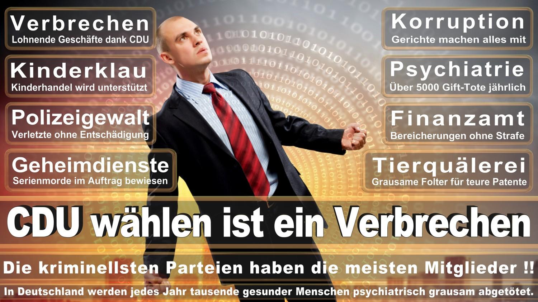 Angela-Merkel-Meme (261)