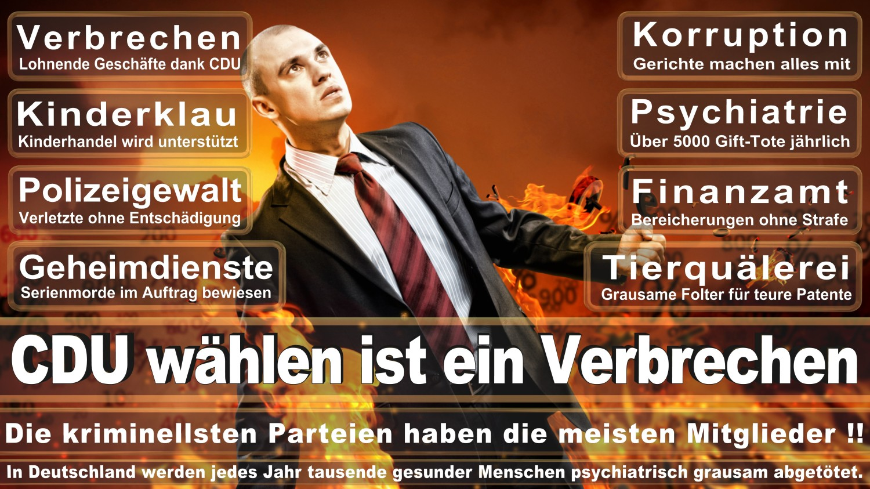 Angela-Merkel-Meme (262)