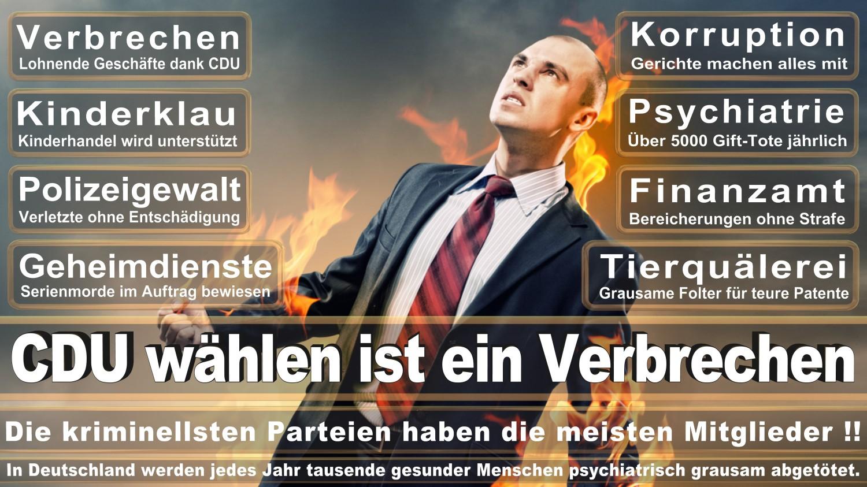 Angela-Merkel-Meme (264)
