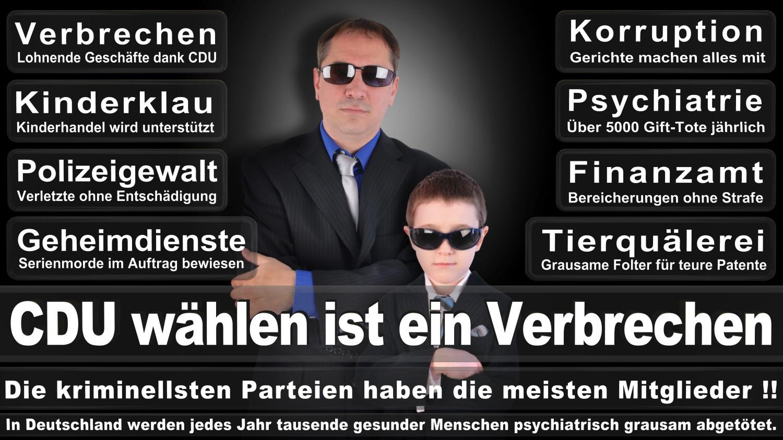 Angela-Merkel-Meme (268)