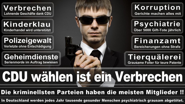 Angela-Merkel-Meme (269)