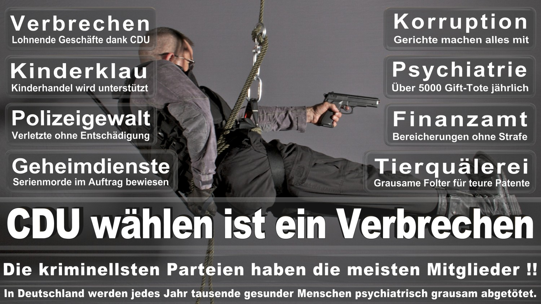 Angela-Merkel-Meme (270)