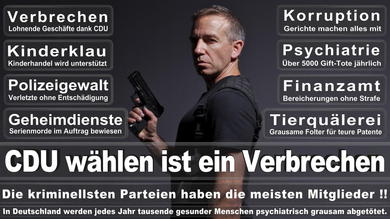 Angela-Merkel-Meme (271)