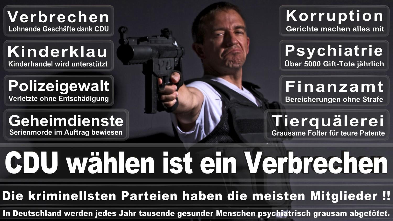 Angela-Merkel-Meme (272)
