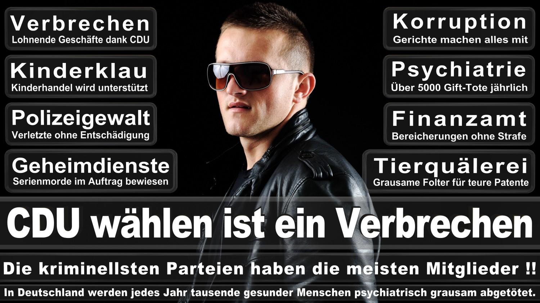 Angela-Merkel-Meme (275)