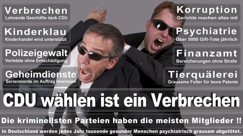 Angela-Merkel-Meme (278)