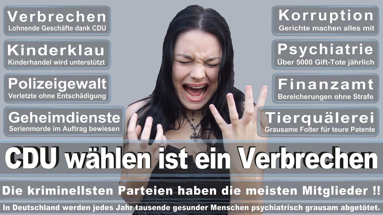 Angela-Merkel-Meme (284)