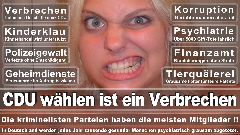 Angela-Merkel-Meme (286)