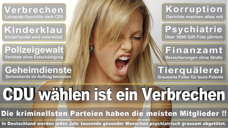 Angela-Merkel-Meme (289)