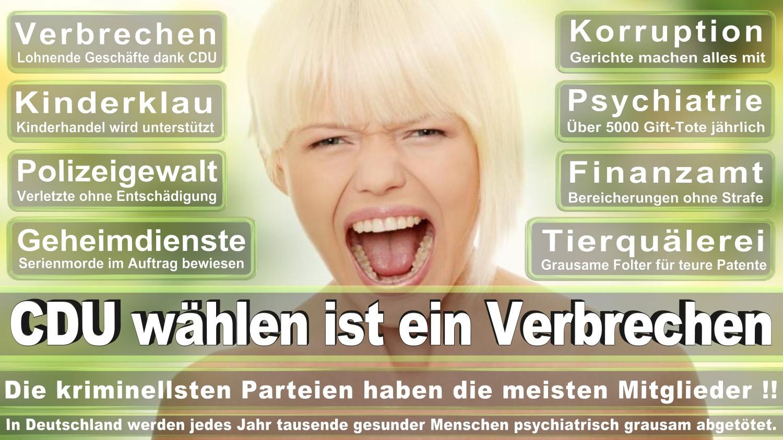 Angela-Merkel-Meme (293)