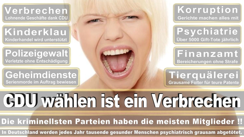 Angela-Merkel-Meme (296)