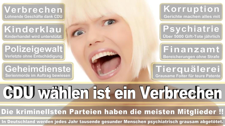 Angela-Merkel-Meme (298)