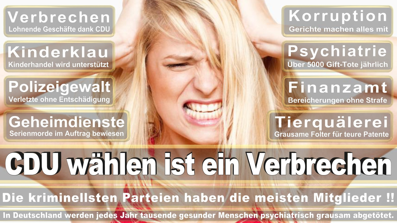 Angela-Merkel-Meme (299)