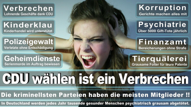 Angela-Merkel-Meme (3)