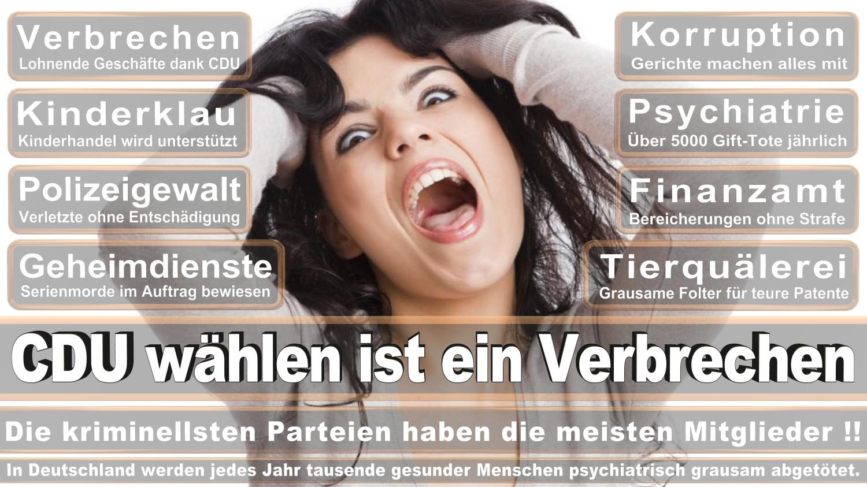 Angela-Merkel-Meme (308)