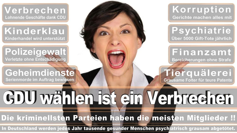Angela-Merkel-Meme (313)