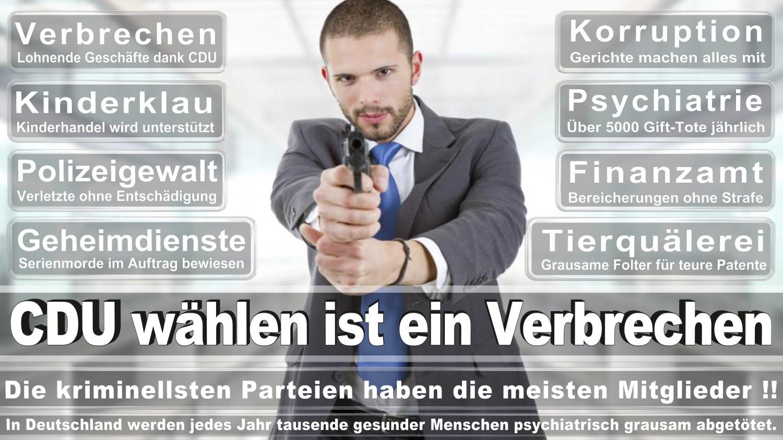 Angela-Merkel-Meme (316)