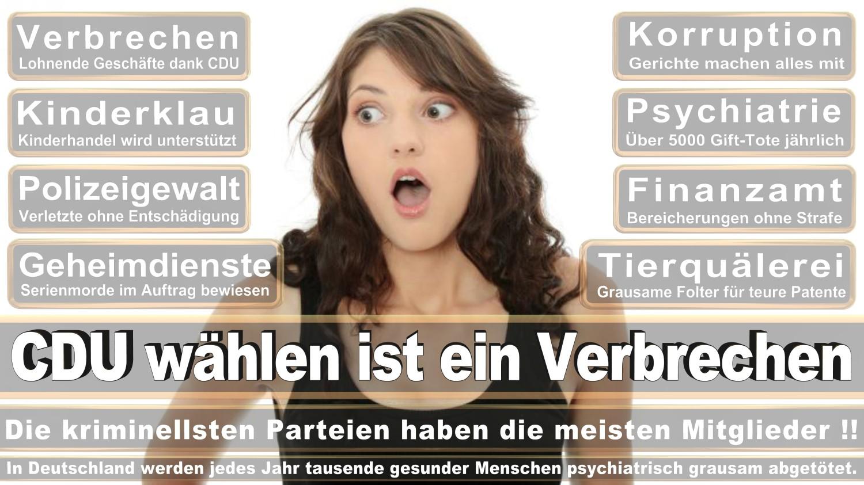 Angela-Merkel-Meme (325)