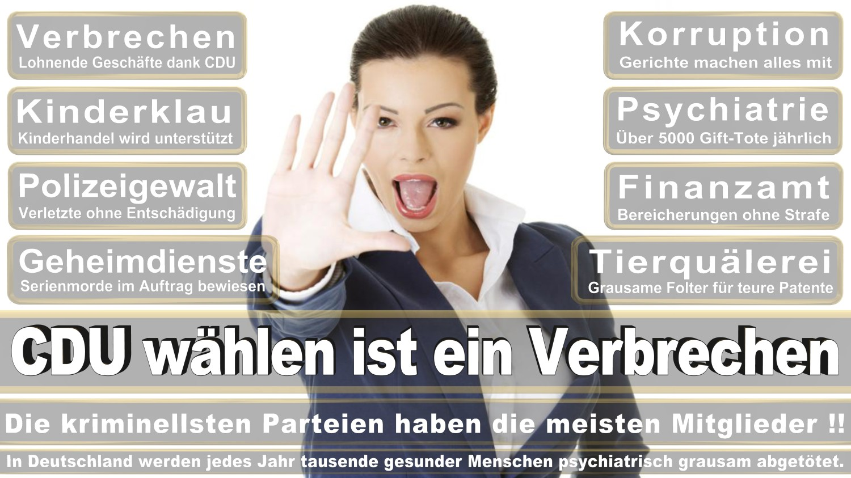 Angela-Merkel-Meme (328)