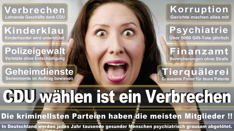 Angela-Merkel-Meme (329)