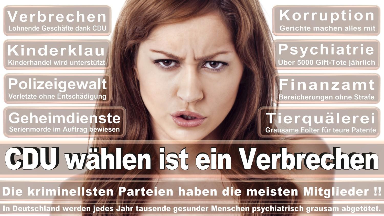 Angela-Merkel-Meme (33)