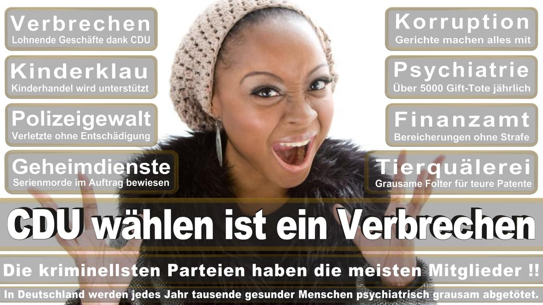 Angela-Merkel-Meme (331)