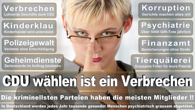 Angela-Merkel-Meme (334)