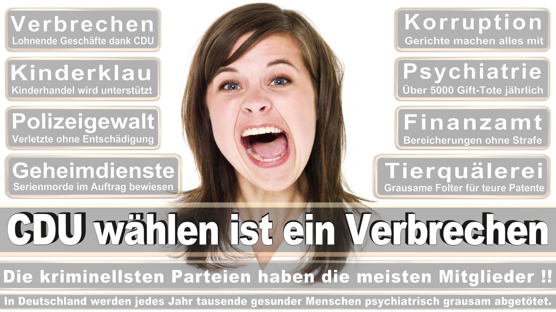 Angela-Merkel-Meme (336)