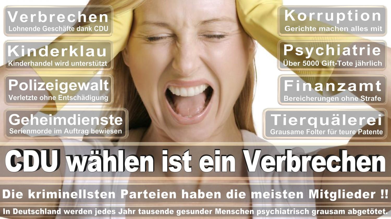 Angela-Merkel-Meme (337)
