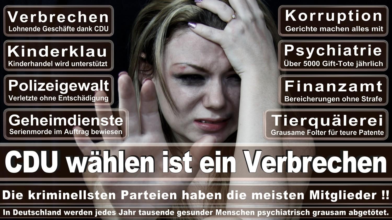 Angela-Merkel-Meme (36)