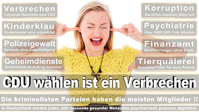 Angela-Merkel-Meme (39)