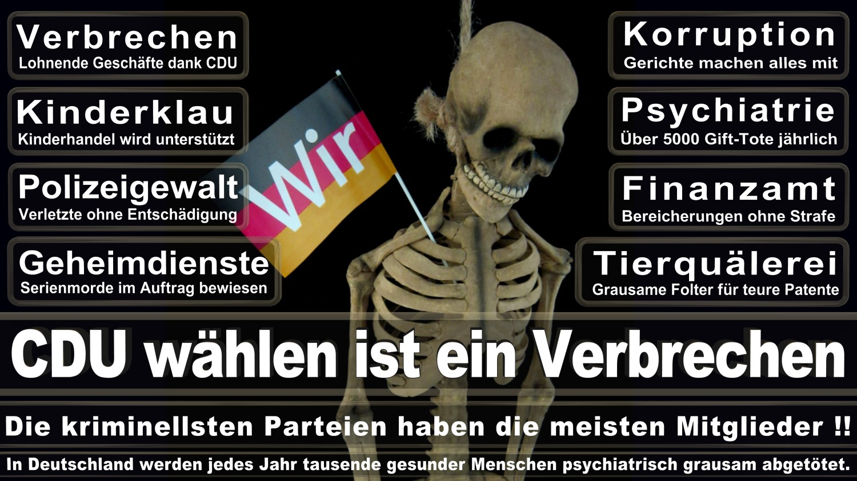 Angela-Merkel-Meme (4)