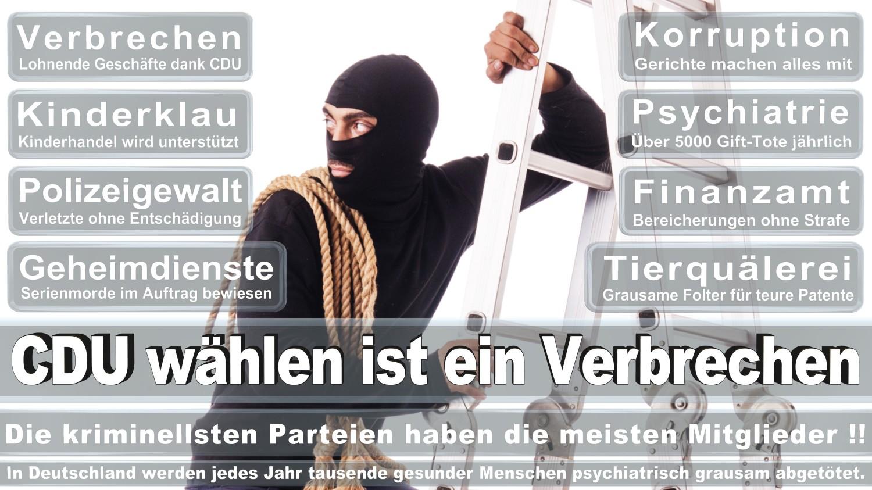 Angela-Merkel-Meme (49)
