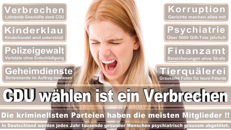 Angela-Merkel-Meme (50)