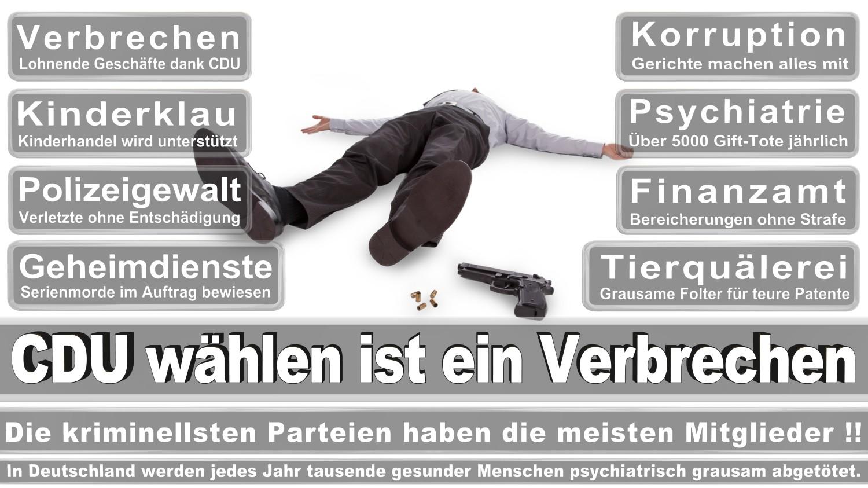 Angela-Merkel-Meme (55)