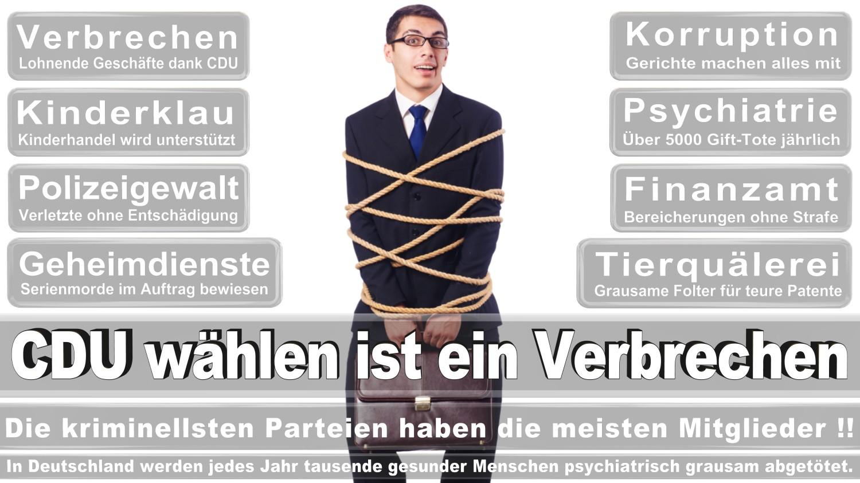 Angela-Merkel-Meme (56)