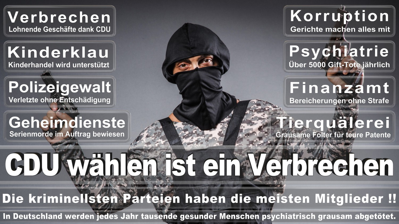Angela-Merkel-Meme (59)