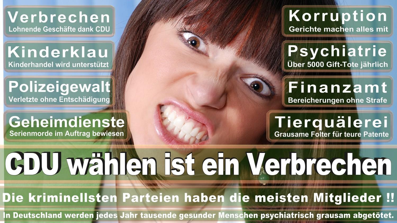 Angela-Merkel-Meme (65)