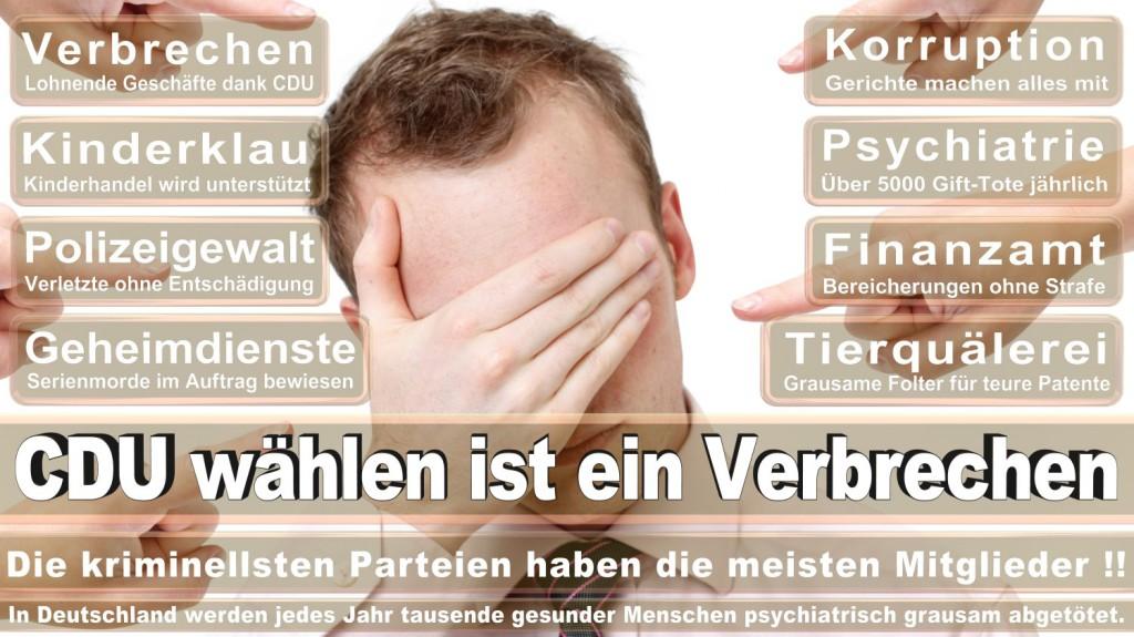 Angela-Merkel-Meme (67)