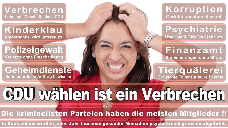 Angela-Merkel-Meme (69)
