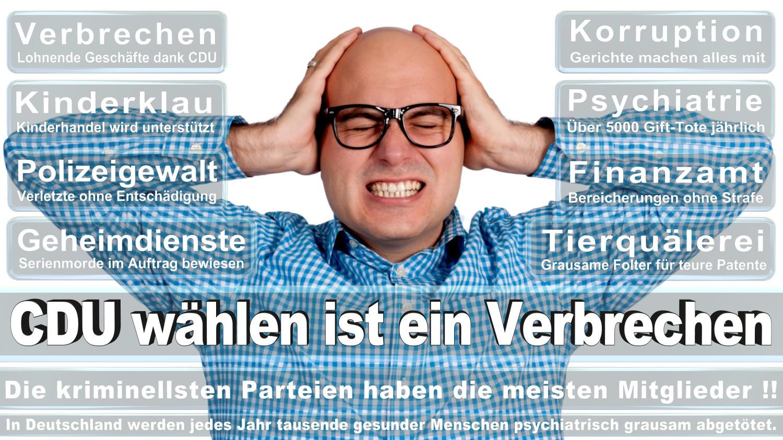 Angela-Merkel-Meme (71)