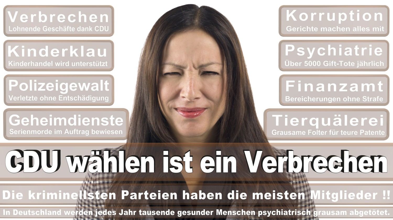 Angela-Merkel-Meme (73)