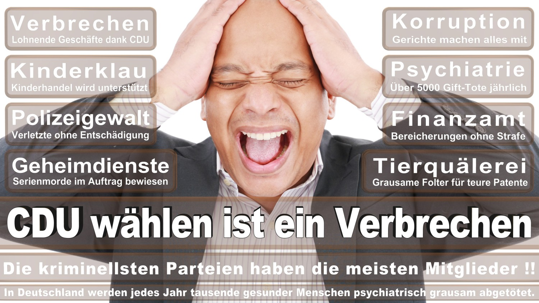 Angela-Merkel-Meme (74)