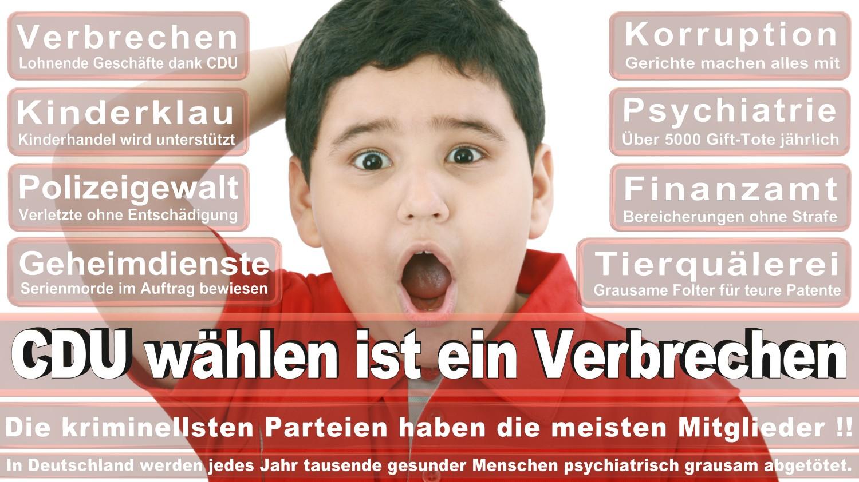 Angela-Merkel-Meme (75)