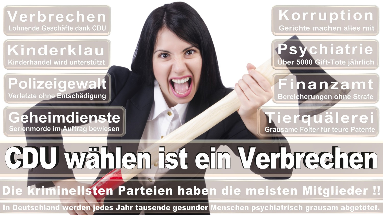 Angela-Merkel-Meme (78)
