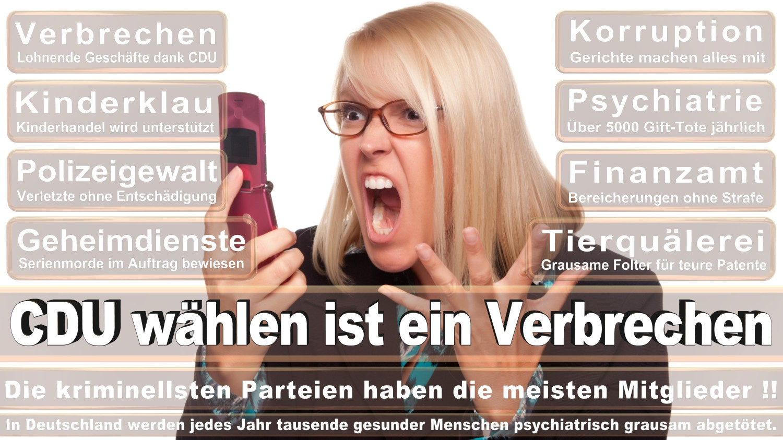 Angela-Merkel-Meme (79)