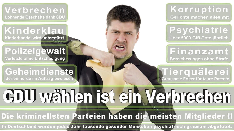 Angela-Merkel-Meme (8)