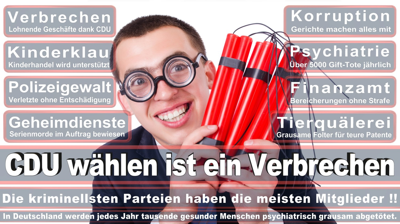 Angela-Merkel-Meme (90)
